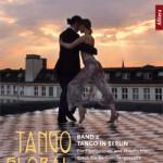 """Tango Global Band 3 ist zugleich der 2. Band der Trilogie """"Tango in Berlin"""", mit dem Titel: """"Die Pionierinnen und Streiflichter durch die Berliner Tangoszene"""""""