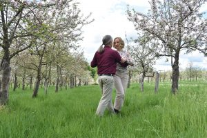 Blühender Tango beim Mai-Tanz der Apfelbäume